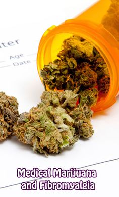 Medical #Marijuana and #Fibromyalgia  Against the odds MM has shown itself worthy of its claims.