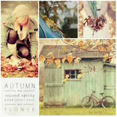 Love Collage, Beautiful Collage, Beautiful Pictures, Collages, Seasons Of The Year, Four Seasons, Fb Cover Photos, Winter Love, Autumn Cozy