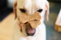 Oatmeal Peanut Butter Banana Dog Treats