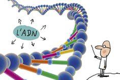 C'est quoi, une maladie génétique ? Genetic Disorder, Board Games