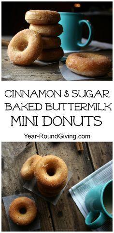 Cinnamon and Sugar Baked Buttermilk Mini Donuts