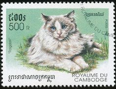 Cambodia 1998 Cat Stamps - Ragdoll