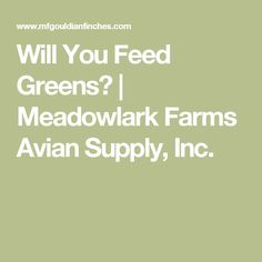 Will You Feed Greens? | Meadowlark Farms Avian Supply, Inc.
