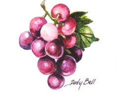 Hey, I found this really awesome Etsy listing at https://www.etsy.com/listing/66897625/grapes-purple-fruit-print-of-watercolor