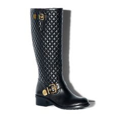 these would go with everything!!! Vince Camuto Shoes BOOTS Prod Class WENTERS Vince Camuto