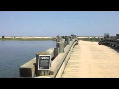 The infamous Dike Bridge in Chappaquiddick where Td Kennedy drove off and Mary Jo Kopeche died Ted Kennedy, Great Schools, Jfk, Nantucket, Woodstock, Massachusetts, Perfect Place, Coastal, Mary
