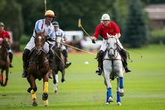Have you ever been to a polo match? If not, you're in for a treat! #MeetInDuPage #WhyHB