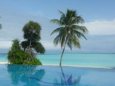 Hotel Vilu Reef Island Resort Nilandhe Atoll Maldives