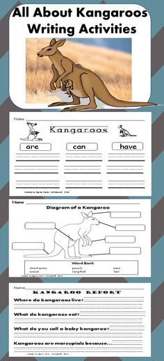 Have your students share what they have learned about kangaroos after reading books and class discussions. Students will fill out graphic organizers, a diagram and a mini report.