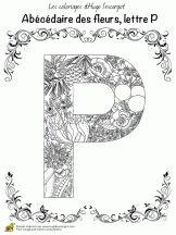 abecedaire belles fleurs a lettre p