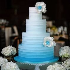 Ombre Wedding Cake- Brian Mullins Photography