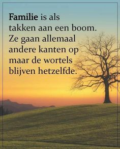 Dutch Quotes, Beautiful Words, Mindfulness, Sunset, Beach, Water, Outdoor, Life, Inspiration