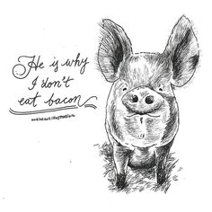 Because no animal deserves to become dinner. Click to learn how you can save their lives by going veg | Animal Art