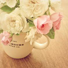 Lovely. Starbucks mug as a flower vase.