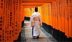 Fushimi Inari Taisha, le sanctuaire aux torii rouges Kyoto, Fushimi Inari Taisha, Red, Coloring Pages, Landscape