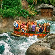 Segundo informou Rikki Niblett no blog do site TouringPlans.com quem visitar o parque Disney's Animal Kingdom durante o período de 03 a 17...