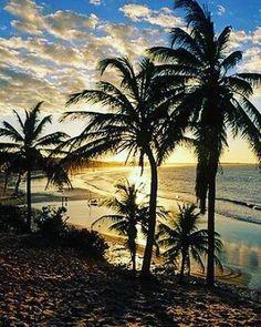 Que pôr do sol hein aventureiros? Reúne a família e vem porque o paraíso é aqui. #preaturadeventure #aventura #jerioparaisoeaqui #praia #amigos #natureza #nature #transfer #seupasseiocomagente # http://ift.tt/2zXlMyg