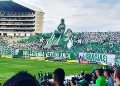 "Gran homenaje de parte del Frente Radical Verdiblanco - Ultras 1992 a Fernando ""Pecoso"" Castro.   Muchas gracias por todo Viejo querido. #Idolo #Pecoso #Campeón"