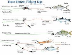 Basic Fish   Basic Bottom Fishing Rigs   BlueWater Fishing Tactics