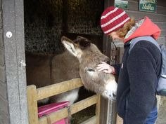 Jackie, Greg and Marlowe: Seven Sisters Sheep Centre