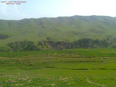 Wazull _ Halabjay Taza