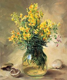 Ann Cotterill   OIL                           Toadflax