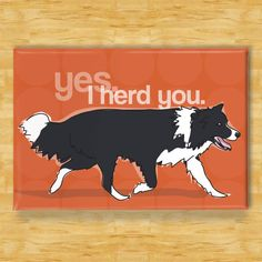 Border Collie Magnet  Yes I Herd You  Border Collie by PopDoggie, $5.99