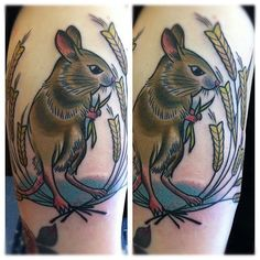 Harvest mouse tattoo Harvest Mouse, X Tattoo, Mouse Tattoos, Tentacle, Human Body, Cool Tattoos, Body Art, Envy, Lust