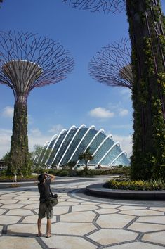 London-based architectural office Wilkinson Eyre have delivered the Cool Conservatory Complex at Singapore's show-stopping Gardens by the Bay project