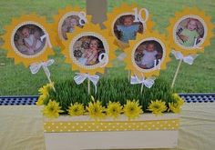 Sunshine centerpiece with month-by-month baby photos