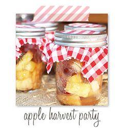 Red Gingham, Picnic, Apple Harvest, Mason Jars, Summer Picnic, Fall Picnic
