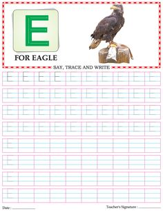 Capital letter writing practice worksheet alphabet E | Download Free Capital letter writing practice worksheet alphabet E for kids | Best Coloring Pages