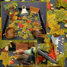 "Invitation to sweep leaves - from Rachel ("",)"