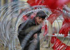 A Kashmiri boy looks through a concertina wire barricade set up by police during an election campaign by Kashmir's ruling National Conference (NC) party, ahead of the fifth phase of India's general election in Pulwama April 15, 2014. Around 815 million people have registered to vote in the world's biggest election - a number exceeding the population of Europe and a world record - and results of the mammoth exercise, which concludes on May 12, are due on May 16.