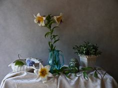Title: Still Life with Lily  Author: Claudia Stanetti Technique: Photography 2014