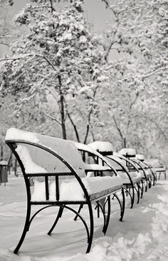 Now that's what I call winter (B&W) Hello Winter, Winter Day, Winter White, Open Season, Its Cold Outside, Let It Snow, Winter Wonderland, Sun Lounger, The Outsiders