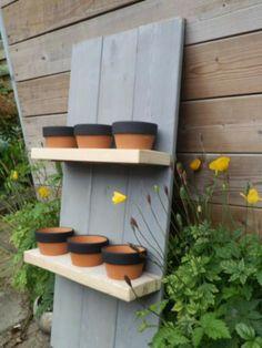 Rek met potten voor tuinkruiden