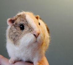 needle felted guinea pig  made by Willane
