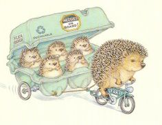 Hedgies on board http://wormithedgehogs.co.uk/?p=1256