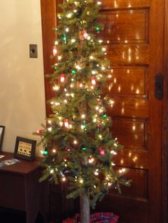 Just one of eight trees...