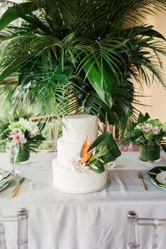 Will the wedding have a theme? The wedding will be tropical rain forest theme. wedding themes A Luxe Tropical Wedding Shoot Palm Wedding, Beach Wedding Bouquets, Exotic Wedding, Beach Wedding Reception, Wedding Reception Decorations, Wedding Shoot, Our Wedding, Wedding Flowers, Beach Weddings