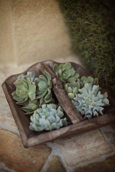 #wedding #budget friendly idea #remplacer une partie des fleurs par des plantes vertes