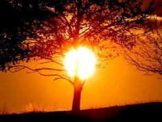 Juste envie de soleil .......BON WE ! Bises du Martinaa ! Val 33(0)231 322 480 ou www.martinaa.fr