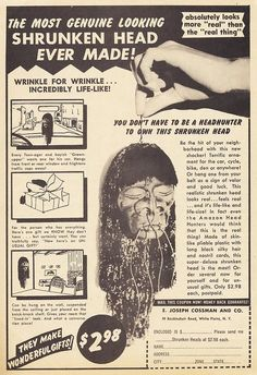 YOU DON'T HAVE TO BE A HEADHUNTER TO OWN THIS SHRUNKEN HEAD