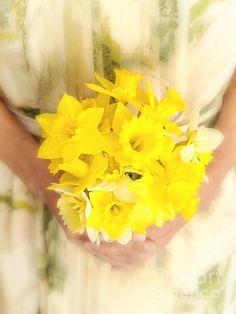 Title:  Spring Daffodils  Artist:  Edward Fielding