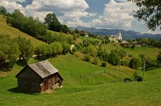 Peace of the countryside - Magura, Brasov (my village). Photo by Iulia Draghici