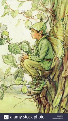 The Elm Tree Fairy. Vintage flower fairy art by Cicely Mary Barker. Taken from 'Flower Fairies of the Trees'. Click through to the link to see the accompanying poem. Cicely Mary Barker, Fairy Land, Fairy Tales, Kobold, Fairy Pictures, Vintage Fairies, Flower Fairies, Fantasy Illustration, Magical Creatures