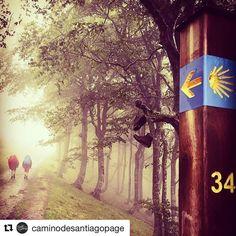 #InstagramELE #camino  Me encantaría algún día hacer el Camino de Santiago. Alguien lo ha hecho? #ceaspring #ceaspring17  #Repost @caminodesantiagopage with @repostapp