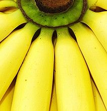 Banana Peel: Removes Splinters, Relieves Mosquito Bites and Poison Ivy Itching, Makes Wrinkles and Headaches Disappear , Relieves Pain From Burns and Scrapes Health And Wellness, Health And Beauty, Health Fitness, Fitness Goals, Banana Peel Uses, Banana Peels, Health Remedies, Home Remedies, Bananas