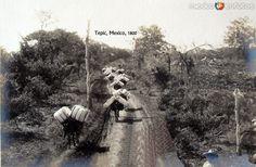 Camino Real con Mulas Hacia 1900